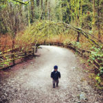 Top 5 Kid-Friendly Hiking Trails on the North Shore