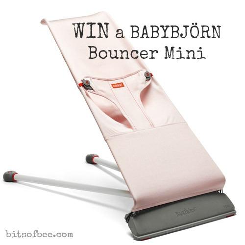 BabyBjorn Bouncer Mini