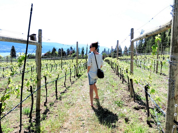 Taking a stroll through the scenic Crush Pad vineyard