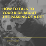 {FAMILY} How To Talk To Your Kids About The Passing Of A Pet